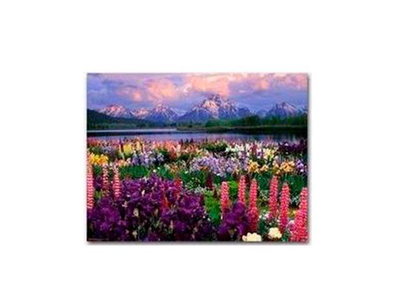 Cuadros de lienzos y madera con paisajes en oferta